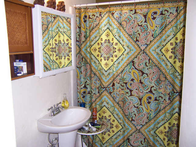 Indian Shower Curtain in Curtain